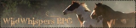 WildWhispers is a semi-realistic, literate equine roleplay with friendly staff. Play as either a Tribe horse, loner, or even a canon character. We have an easy minimum word count of 100. Come join us!