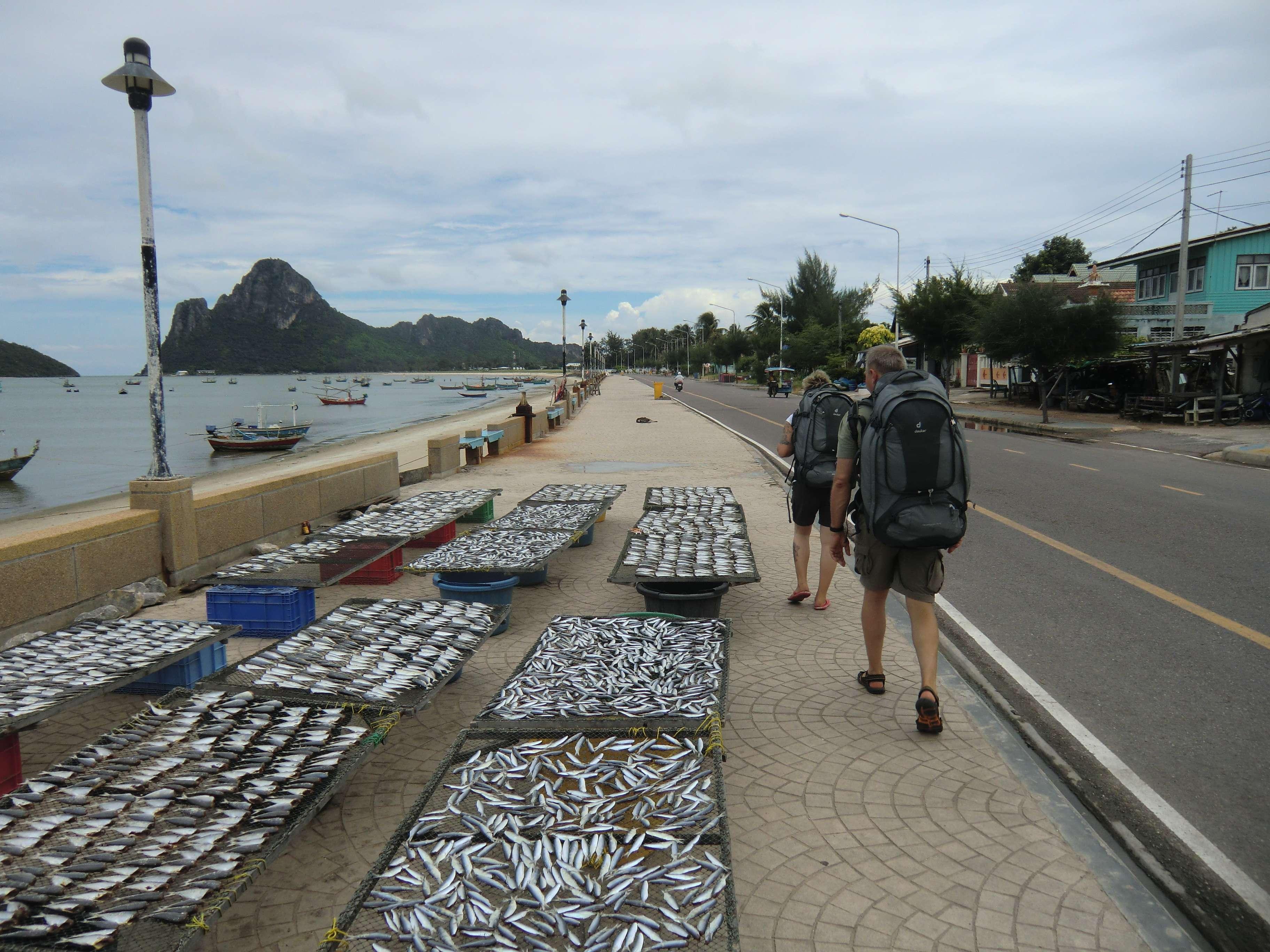 der beschwerliche Weg an etwas riechenden Fischen vorbei
